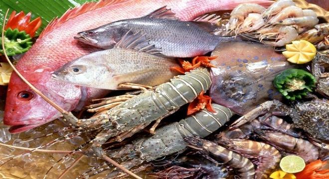 máy bơm nước nông nghiệp thủy sản in may bom nuoc nong nghiep thuy san